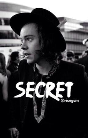 Secret⇒Zarry Stylik  by ricegcm