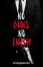 No Guns No Entry by kimlyshane22