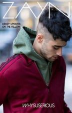 ZAYN  by whysuserious