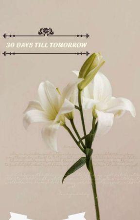 30 days till tomorrow by Rinsa123
