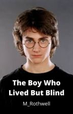 Harry Potter, the Blind Boy by GinnywithHarry