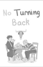 No turning back - a johnlock fanfiction by justasherlockian