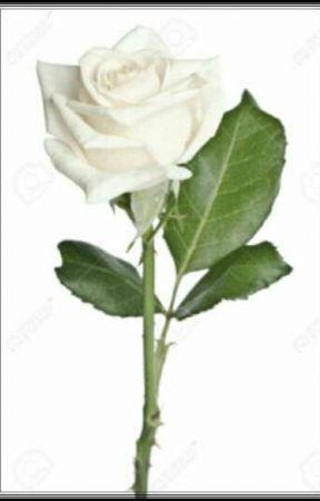 One Little White Rose by FabricioAndradeNunes