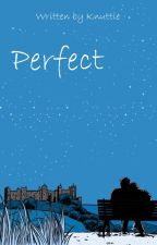 Perfect // H.S. by knuttie