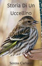 Storia di un uccellino by SerenaCarlucci