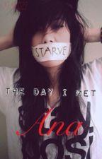 The Day I Met Ana by kataroo22
