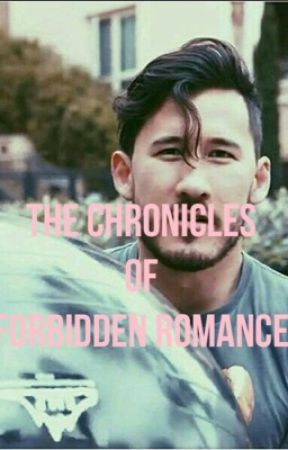 The Chronicles Of Forbidden Romance (teacherxstudent, markiplierfanfic) by -_sctcnsslxt_-