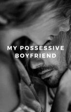 Veinse (My possessive Boyfriend) by Edelwisssss123