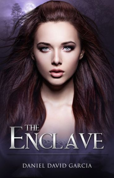 The Enclave by ddgbooks