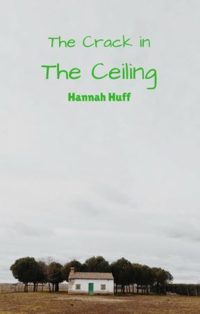 The Crack in the Ceiling by HannahClinePlaisted