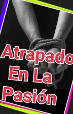 Atrapado En La Pasión (Jungkook y tu Lemon) by AnieBear94