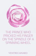 The Prince Who Pricked His Finger On The Spinning Wheel by VentreCanard