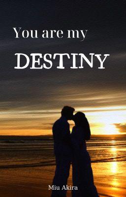 Đọc truyện You are my destiny