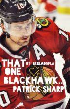 That One Blackhawk... (Patrick Sharp Fan Fic) by Ekblad5FLA