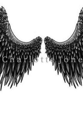 Gray Wings by lamb_chops23