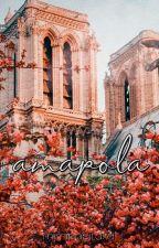 Amapola |Nico Di Angelo tu| by mimipapitaxd
