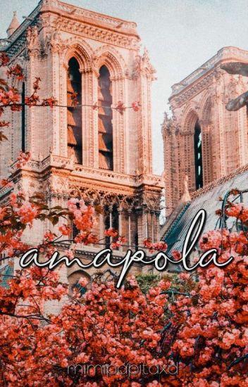 Amapola |Nico Di Angelo tu|
