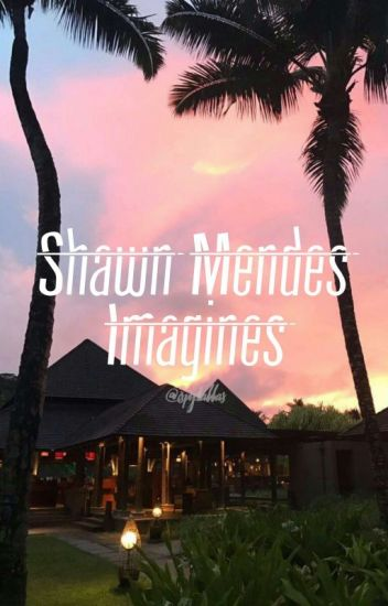 imagines ❥ shawn mendes
