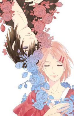 Đọc truyện (Sasusaku) (Nữ phụ văn) Năm Ấy, Em Từng Yêu Anh