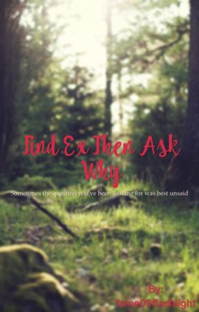 Find Ex Then Ask Why by fame09flashlight