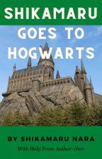 Shikamaru Goes To Hogwarts by ZzzShikamaruzzZ