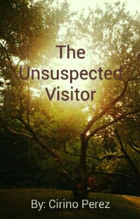 The Unsuspected Visitor by CirinoPerez