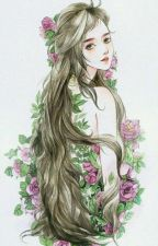 (NP) Sức Hấp Dẫn Của Nữ Phụ. by myhearteuOMG02