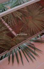 whiskers | kang daniel by bigwjin