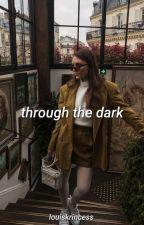 through the dark ➳ n.h. by louiskrincess