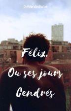 Félix, ou ses jours cendrés by OnVoleraLesEtoiles