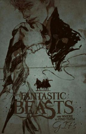 Fantastic Beasts Gifs  by DramioneHub