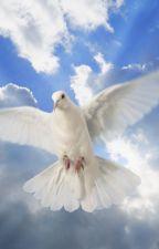 Elämän tarkoitus: Ylösnousemus by Taivas1Kanavat
