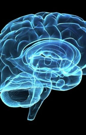 brain stuff by 5SecondsOfPanic__