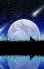 Alene under stjernene by Moonfur2