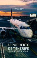 Aeropuerto de Tenerife by shadriella