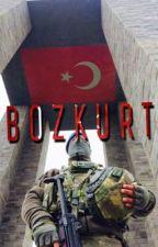 BOZKURT (ASKERLER SERİSİ 2. KİTAP) by melikecalkay