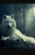 Die weiße Wölfin by Lunalu300