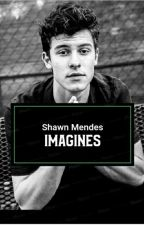 Shawn Mendes Imagines by netflixenshawn_