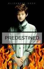 PREDESTINED (HUNHAN) by Elizabeth_Oh94