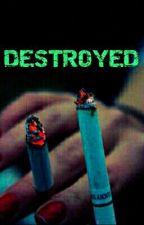 Destroyed by daniii1505822
