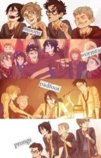 Marauders preferences and Imagines  by castieldream
