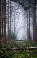 Camp Amethyst Lake by Greninja94