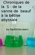 Chroniques de la S : de la vanne de beauf à la bêtise abyssale by Badlittlecream