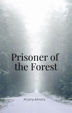 Prisoner of the Forest by justyourtypicalteen
