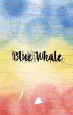 Blue whale  by magshmtt