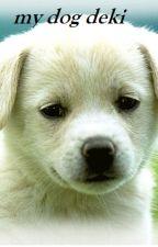 my dog DEKI by KenshinMamalayan