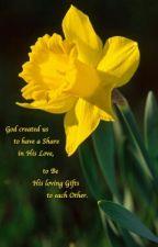 The Daffodils by Daffodil__dH
