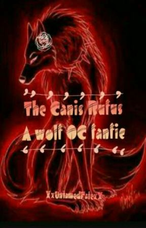 The Canis Rufus :: A Wolf OC Fanfic - Pack Rankings - Wattpad