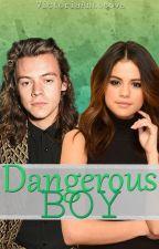 Dangerous boy || h.s by VictoriaAntosova