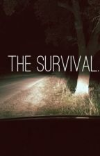The Survival (Zombie Apocalypse) by The_MeliiMely
